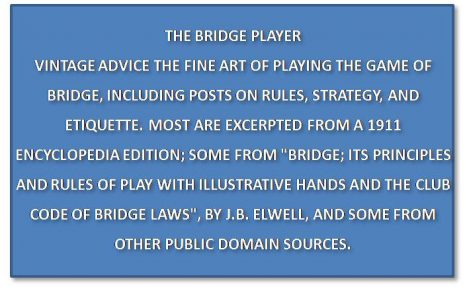 The Bridge Player