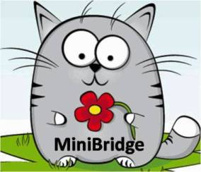 catminibridge