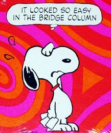 peanuts bridge 1