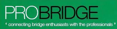 pro bridge logo