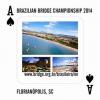 Brasileirao 2014