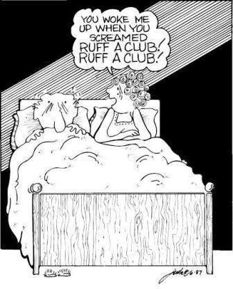 BRIDGE cartoon1000