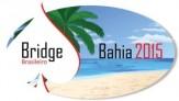 Logo-Bridge-web
