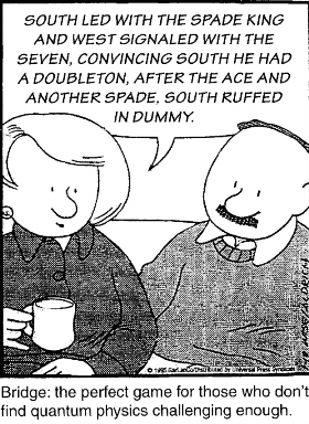 bridge cartoon 32
