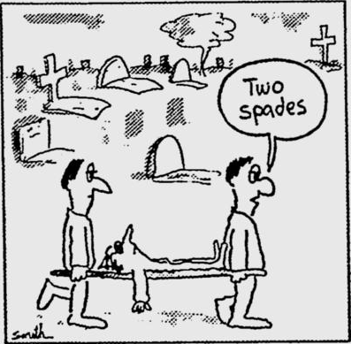 bridge cartoon two spades