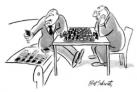 bridge cartoon vs chess