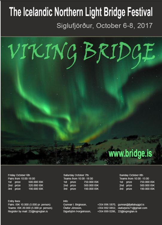 Viking Bridge 2017